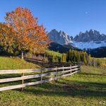 Oltre 100 km di nuove ciclabili in Veneto
