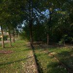 l'ex ferrovia del Montello diventa ciclabile